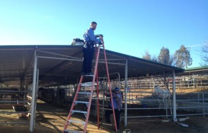 An Operations crew works on the shade structure at the Equestrian Center.