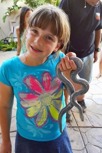 Savannah Liado, 10,  is seen here holding a very young Rosy Boa. Some snakes, such as this non-venomous Rosy, are naturally gentile and very rarely bite, even when first caught. This makes them interesting and educational pets for children. They can live 20-plus years and require extremely little care. Photo by Carrie Liado.
