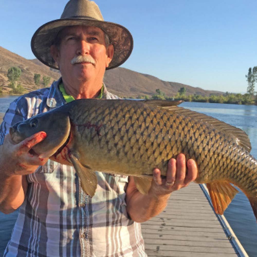 Fishing license required to fish in canyon lake the for Canyon lake fishing ca