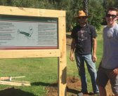 Scout installs fitness stations at Evans Park