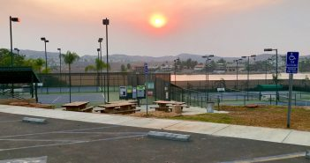 POA removes nuisance trees at tennis courts